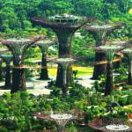 Vài nét về đất nước Singapore