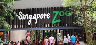Kinh nghiệm tự túc du lịch Singapore